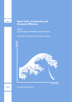 Special issue Water Policy, Productivity and Economic Efficiency book cover image