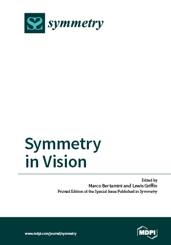 Symmetry in Vision