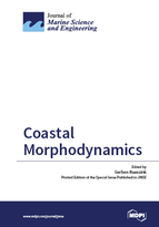 Special issue Coastal Morphodynamics book cover image
