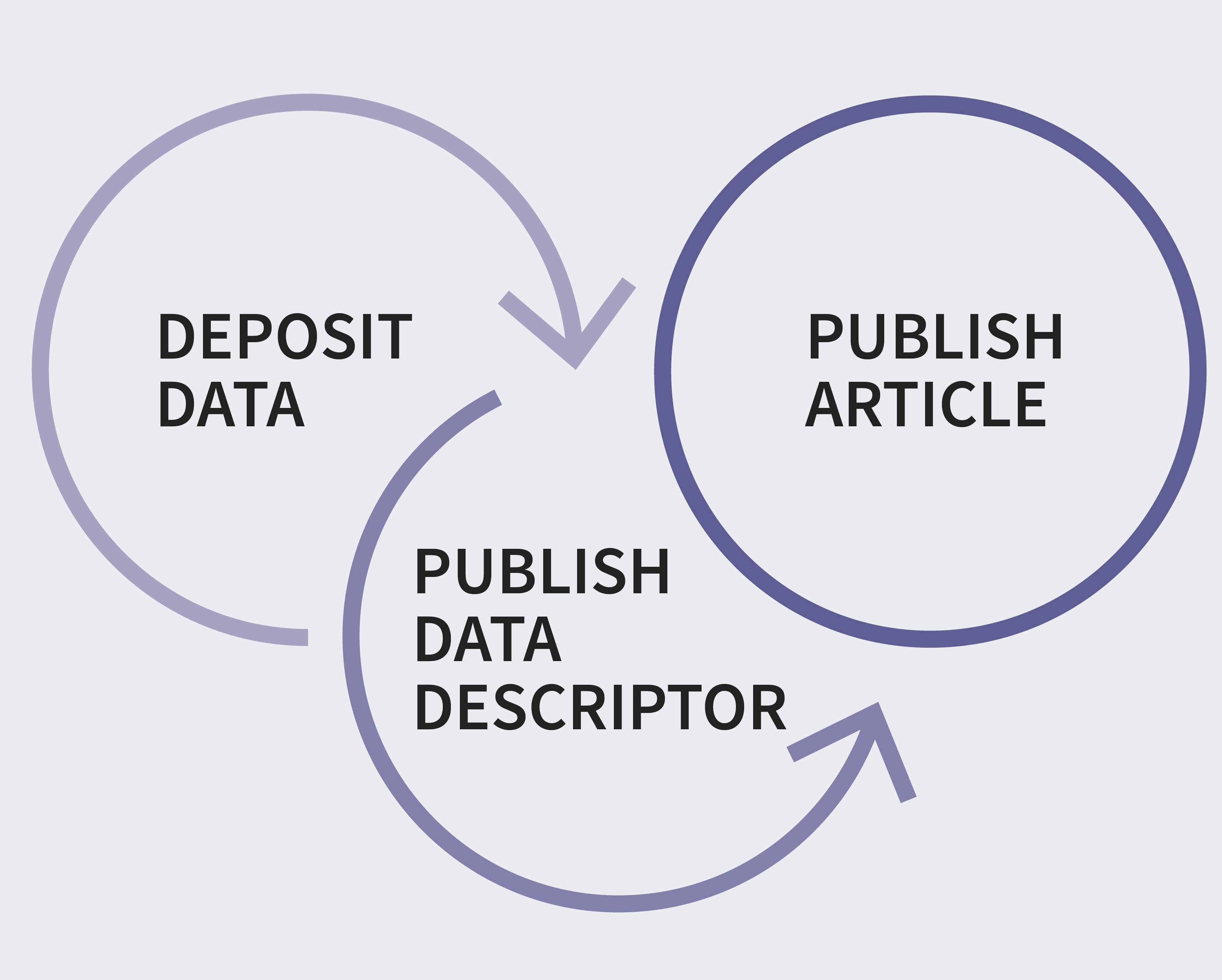 Dataset_Papers_Overview